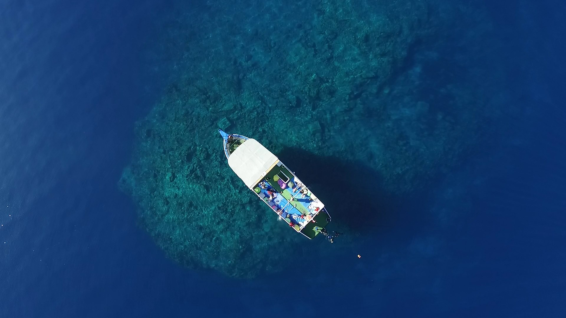 Büyük Resif